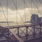 brooklyn-bridge-nyc-P1080399_ ©fc