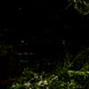 minimal-fabiennecarreira-7MG-5160-3
